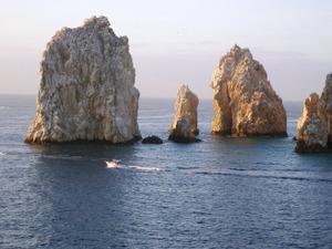 Cabo_sea_lions2_2