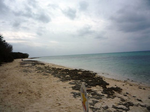 Star_sand_beach_1